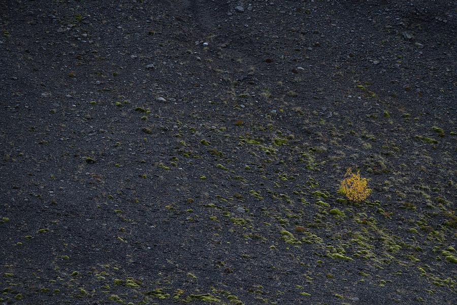 tour-islande-automne-83